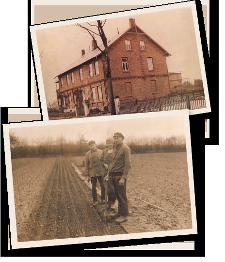 Langeloh Baumschulen historisch